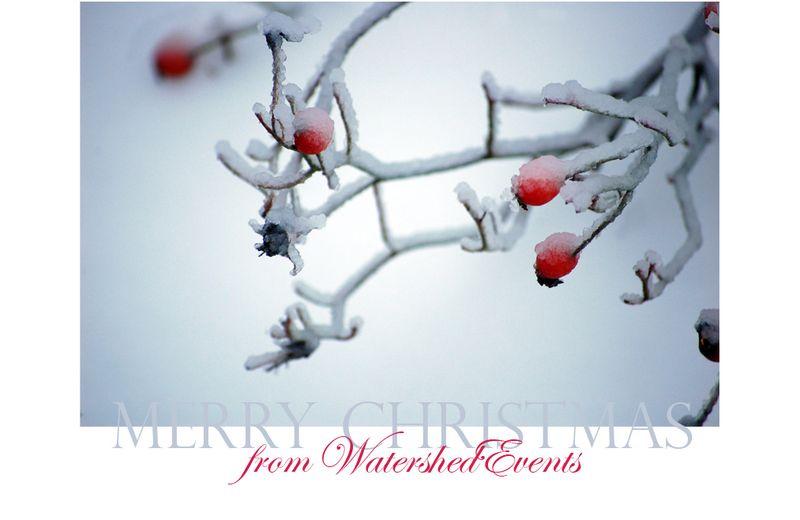ChristmasBlog post