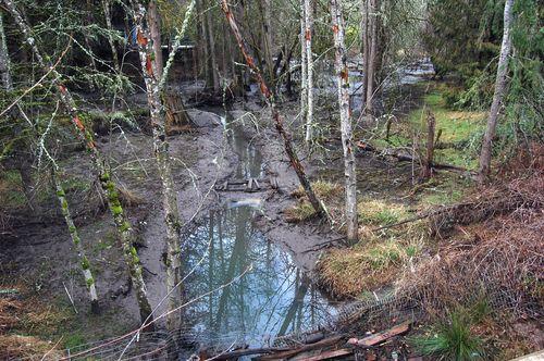 Ash Creek - 74th