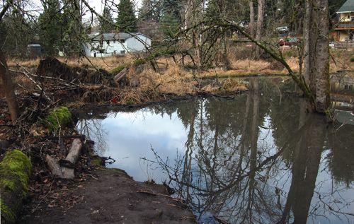 Ash Creek -77th