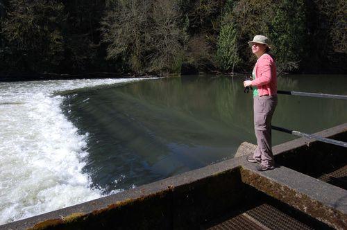 JMN at diversion dam