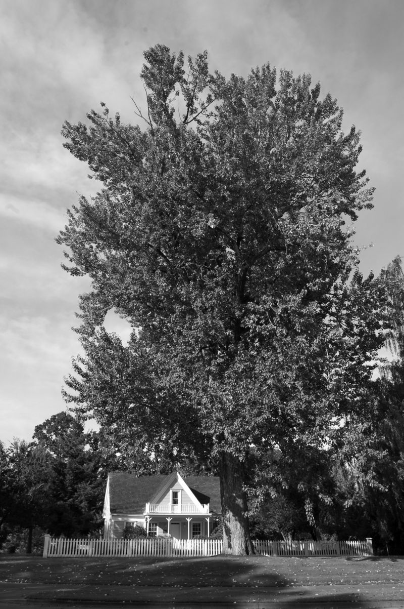Fanno Farm House