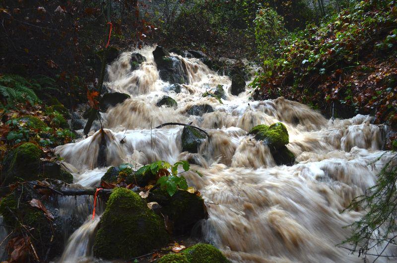 Nov Rain -15-