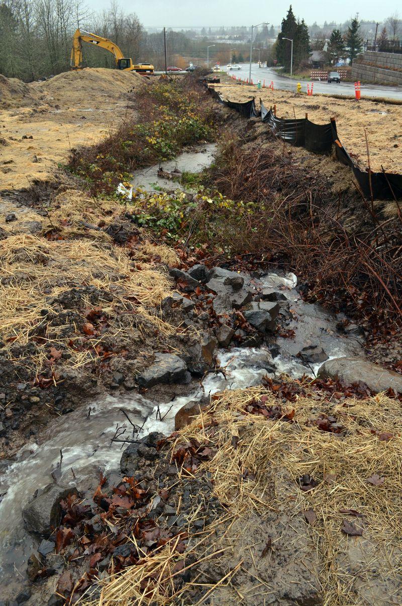 Dartmouth Stream